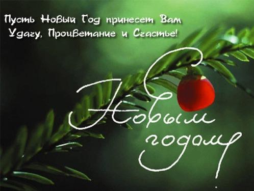 Стихи, тосты, смс и прочее для поздравлений с Новым годом и Рождеством... 37048308_2