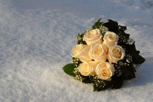 наши подарки в действии)) 39736097_2422789