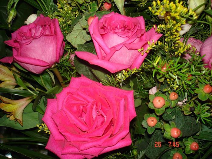 Lule dhe vetëm lule! 50038057_228