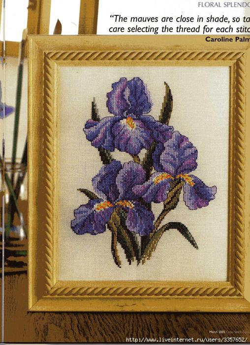 Много..... 57173169_Cross_Stitch_Collection_Issue_115_15