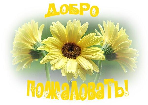 Добро пожаловать!  - Страница 3 61425553_1ad99d3dea71