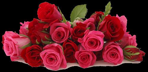 ПОЗДРАВЛЯЛКИ - Страница 25 65255253_65161036_64072037_Rose_background_2