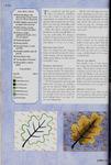 Книга: Самая полная энциклопедия вышивки. 73891558_preview_116