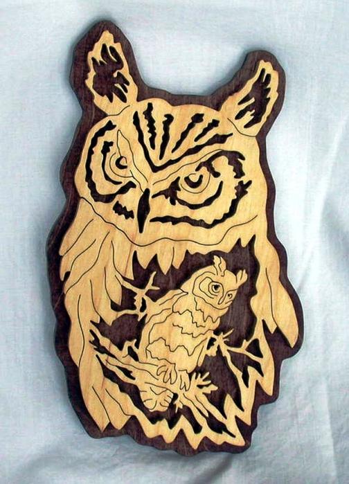 ******* 79711892_owl