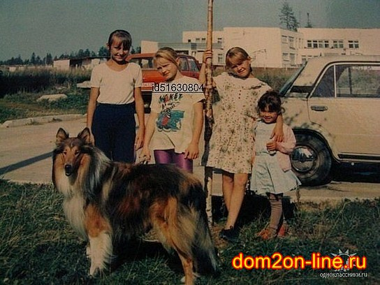 Даниэль  Антонович - Страница 2 95212384_large_2233ee62eb10