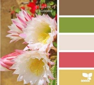 Все о выборе цвета в одежде. 95429780_large_7