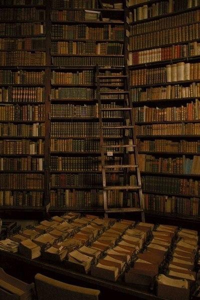 Бывают в этой жизни миги, Когда накатит благодать, И тут берутся в руки книги И начинаются читать. 96768466_large__1n6YZCjE0