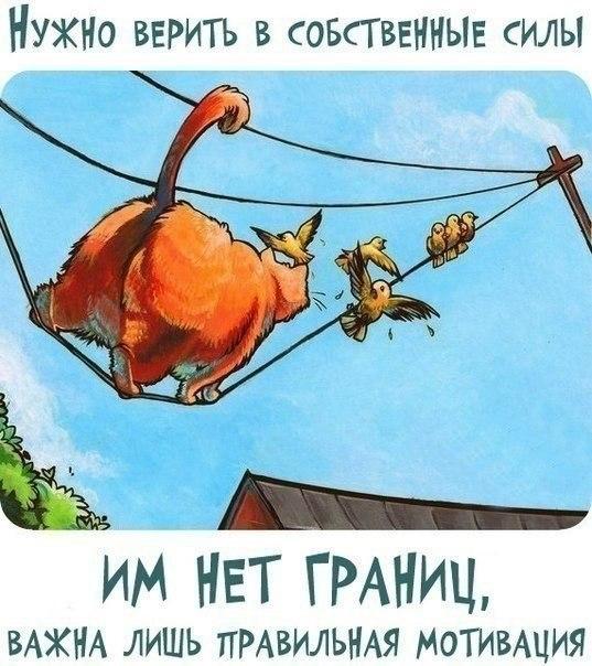 Позитивчик))) 102525256_1372616387_frazochki12
