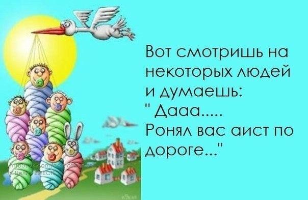 Позитивчик))) 102525260_1372616395_frazochki14