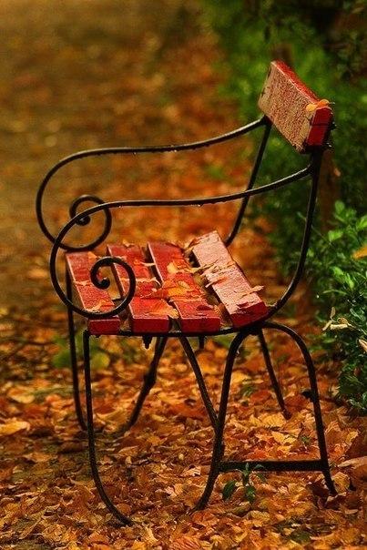 ... Y caen las hojas, llega ....¡¡¡ EL Otoño !!! 105055728_0_a1430_84615cf8_XL