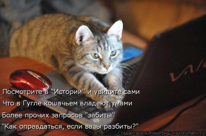 kotomatritsa_h (700x464, 364Kb)