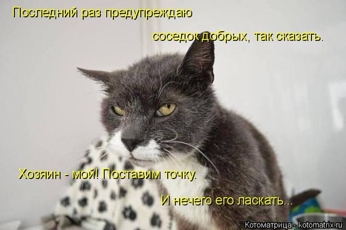 Котоматрица  - Страница 39 138224924_15