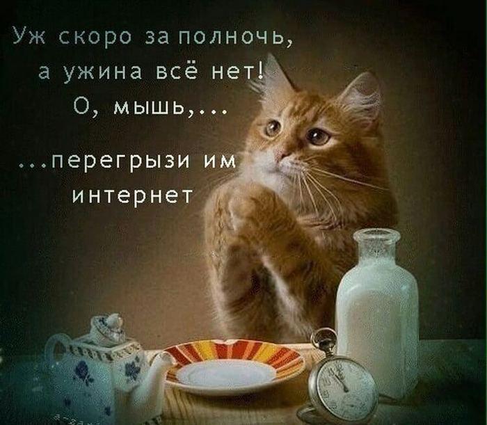 5402287_podnjat6 (700x611, 58Kb)