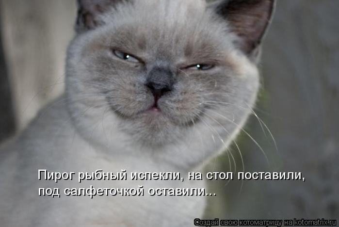 kotomatritsa_k (700x468, 178Kb)