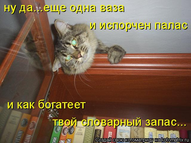 kotomatritsa_r (1) (640x480, 239Kb)
