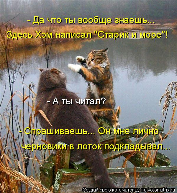 kotomatritsa_U (600x655, 392Kb)