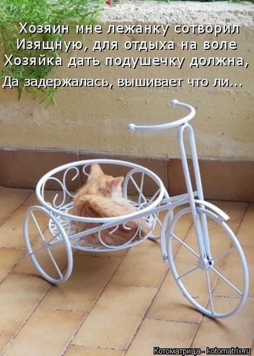kotomatritsa_C (1) (498x700, 356Kb)