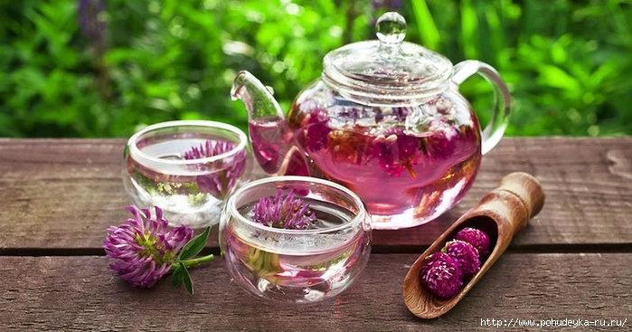 Чайная тема - Страница 7 146429012_3925073_gjkgk