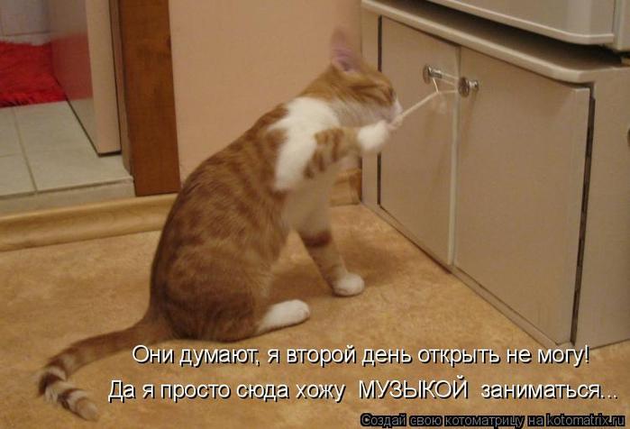kotomatritsa_5 (700x476, 281Kb)