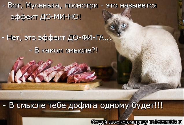 kotomatritsa_a (637x433, 218Kb)