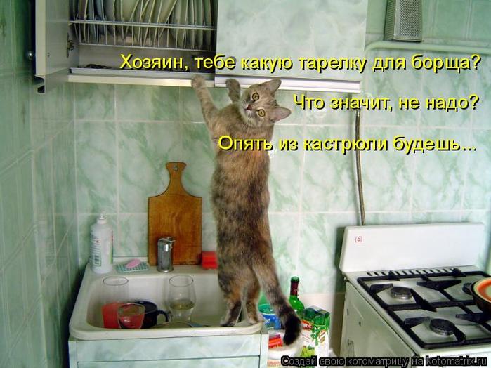 kotomatritsa_Y (700x524, 381Kb)
