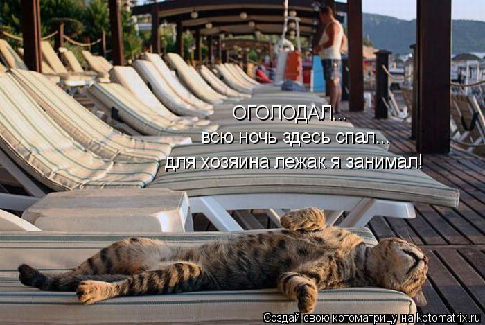 kotomatritsa_2v (700x469, 261Kb)