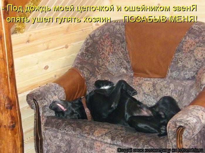 kotomatritsa_J (700x524, 421Kb)