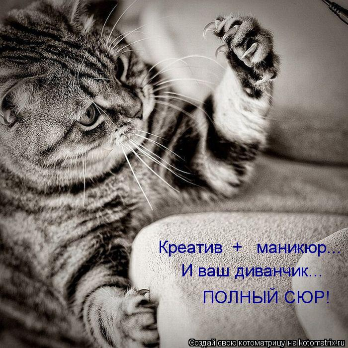 kotomatritsa_MQ (700x700, 332Kb)