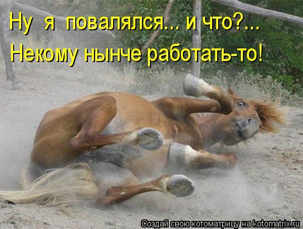 kotomatritsa_Dk (600x454, 215Kb)