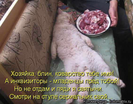 kotomatritsa_s (565x440, 211Kb)