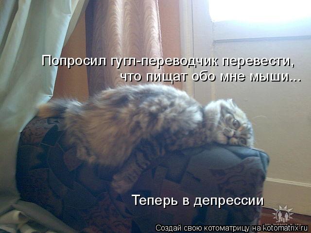 kotomatritsa_54 (640x480, 183Kb)