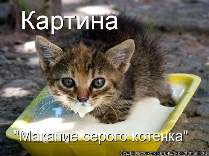 kotomatritsa_Ht (1) (700x525, 371Kb)