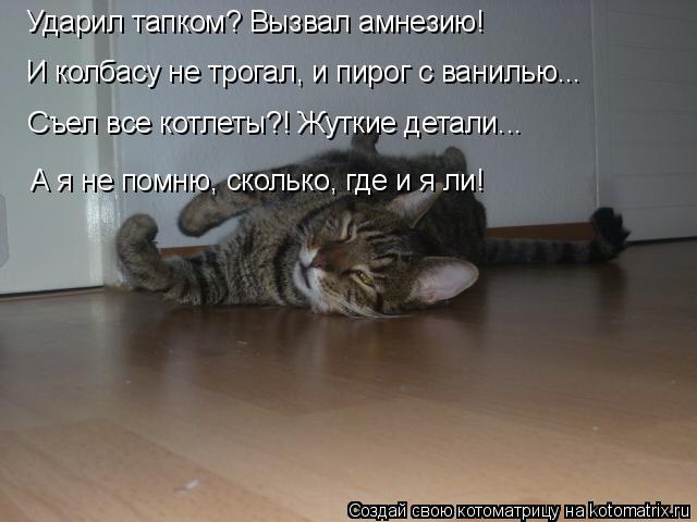 kotomatritsa_G (640x480, 140Kb)