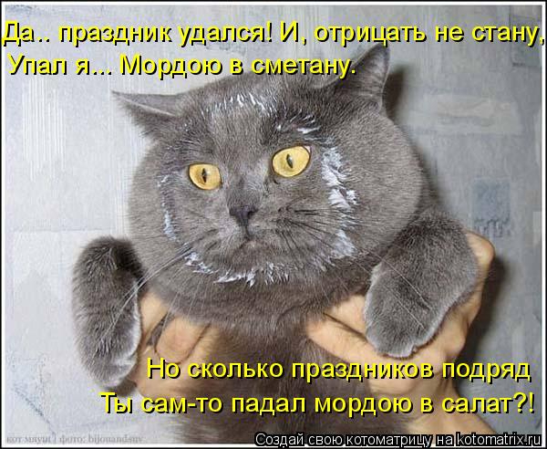 kotomatritsa_B (600x492, 241Kb)
