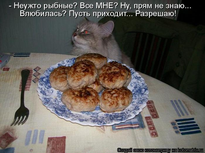 kotomatritsa_Qy (700x523, 333Kb)