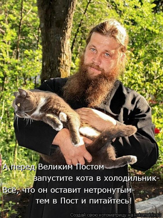 kotomatritsa_pl (524x700, 424Kb)