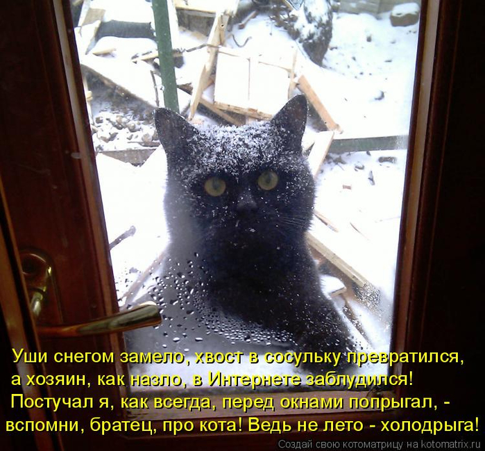 Stimka.ru_1296376791_797482 (700x649, 475Kb)