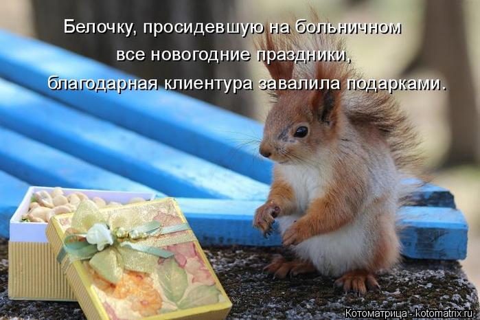 kotomatritsa_H0 (700x466, 344Kb)