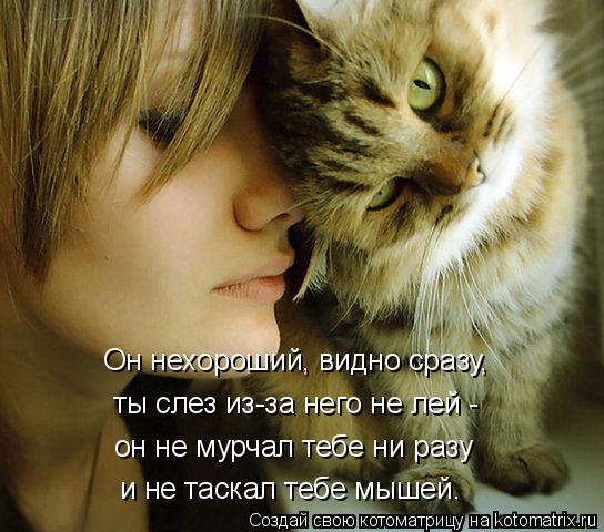 kotomatritsa_L (2) (544x480, 226Kb)