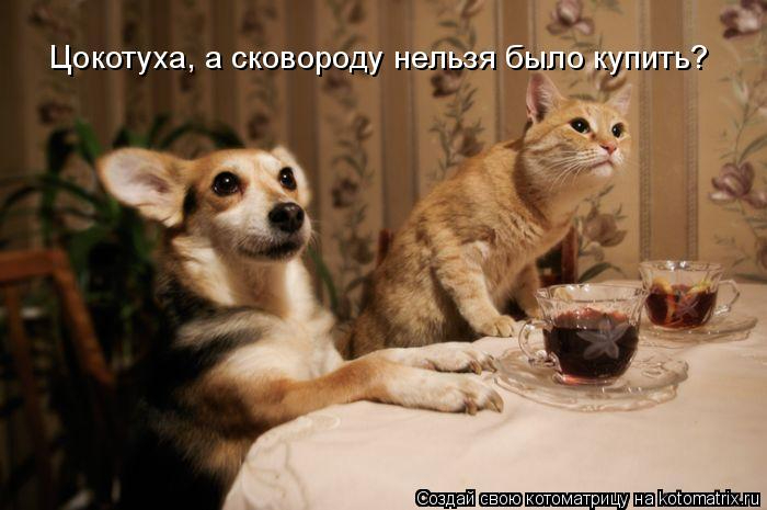 kotomatritsa_p_ (700x465, 213Kb)
