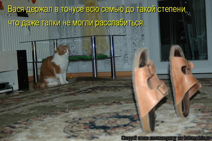 kotomatritsa_qR (700x464, 324Kb)