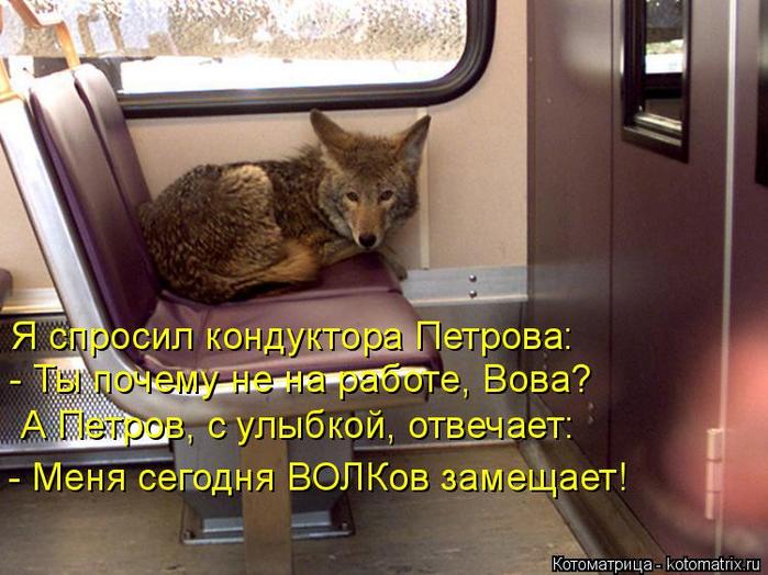 kotomatritsa_Ko (700x524, 402Kb)