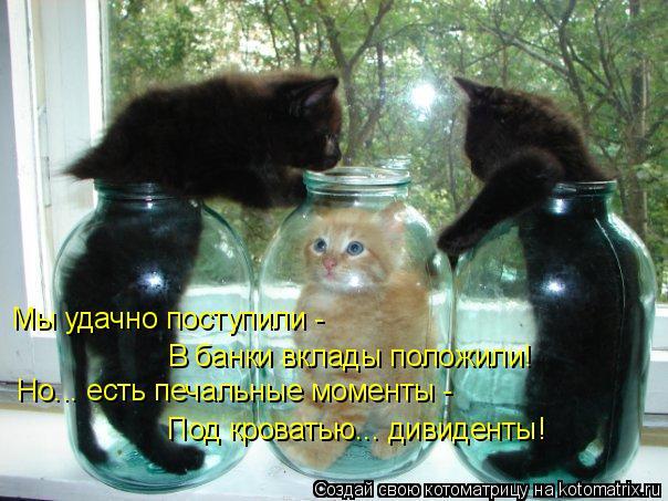kotomatritsa_r (1) (604x453, 260Kb)