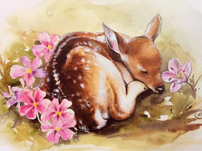 deer-watercolor-painting-27 (700x522, 406Kb)
