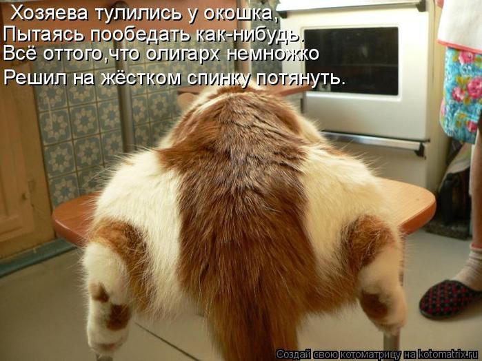 kotomatritsa_J (700x524, 383Kb)