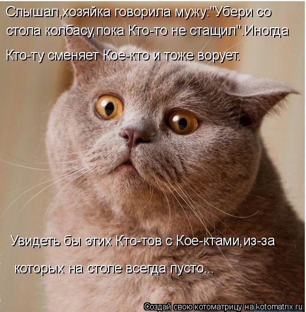 kotomatritsa_R (605x617, 287Kb)