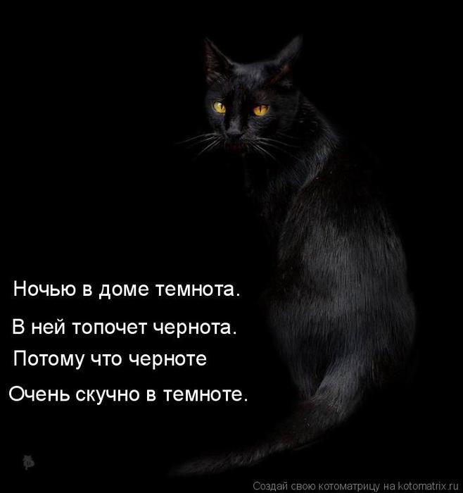 kotomatritsa_Zb (658x700, 117Kb)