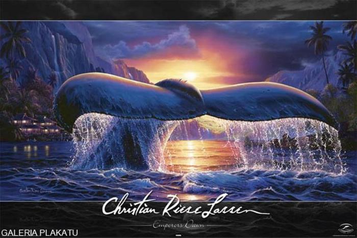 lassen-pletwa-wieloryba-plakat (700x467, 318Kb)