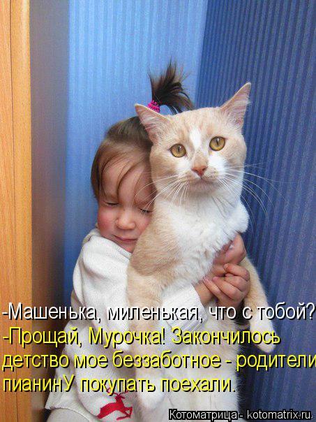 kotomatritsa_L (453x604, 267Kb)
