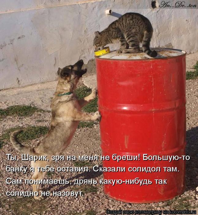 kotomatritsa_P (646x700, 478Kb)